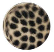 luipaard beige
